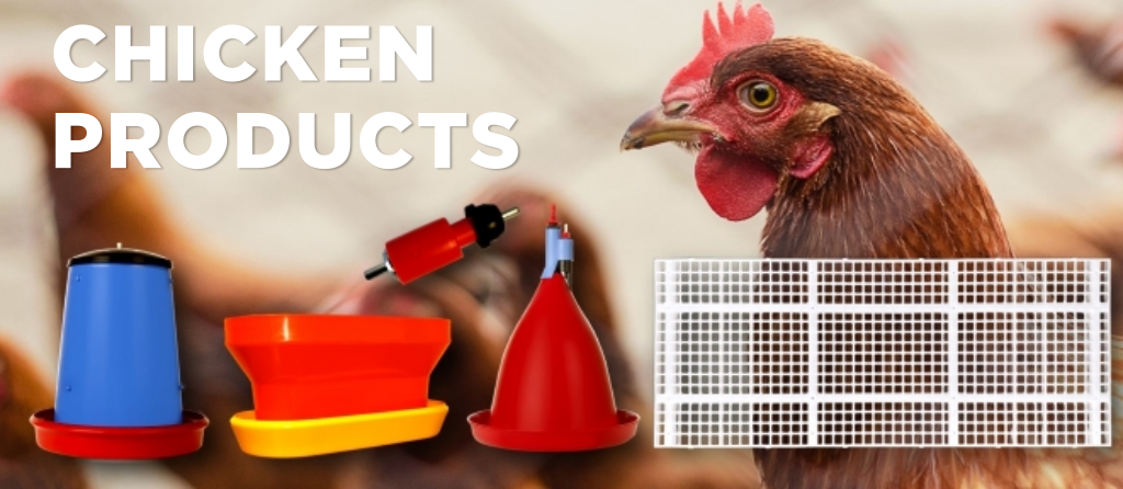 chicken product indiv